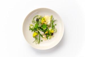 arabelle_assiette_jardin_legumes